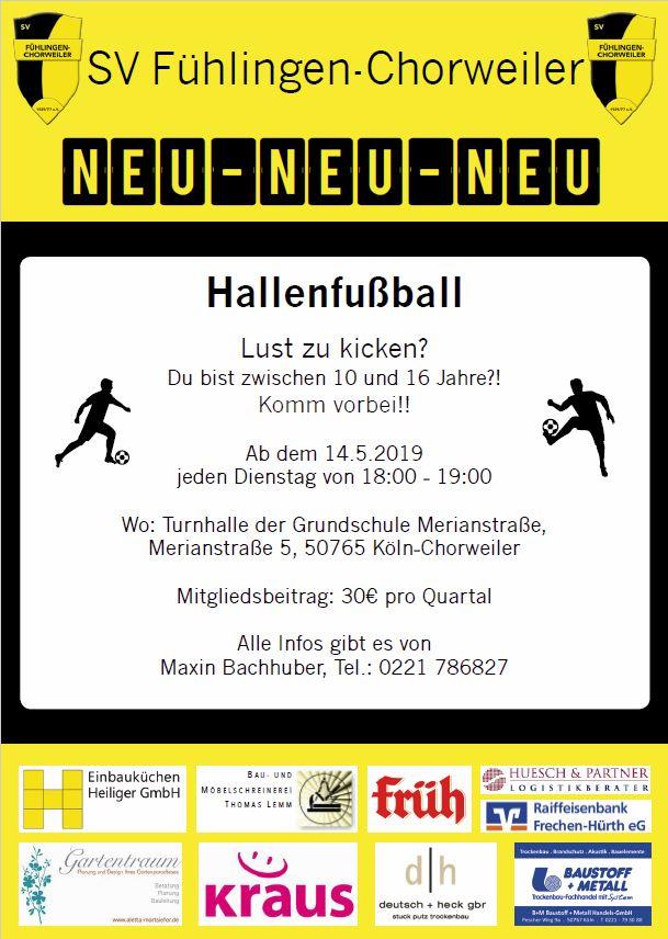 Hallenfuball